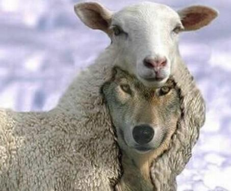 False Prophets and False Visions